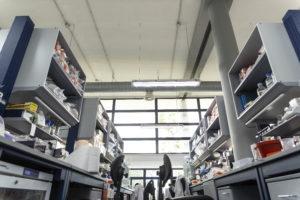 Canalizzazione area impiantistica - Laboratorio TIGEM